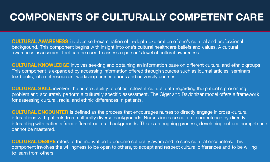 thumbnail_Culturally-Competent-Nursing-Chart.jpg.png