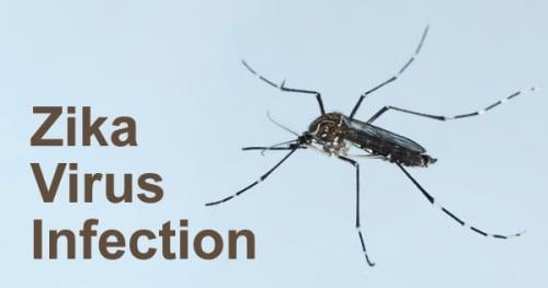zika-virus-infection-556554.jpg